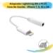 Adaptador Lightining (M) x P2 (F)  Fone De Ouvido – iPhone 7, 8, XS e XR