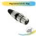Plug Cannon XLR (F) – Ring